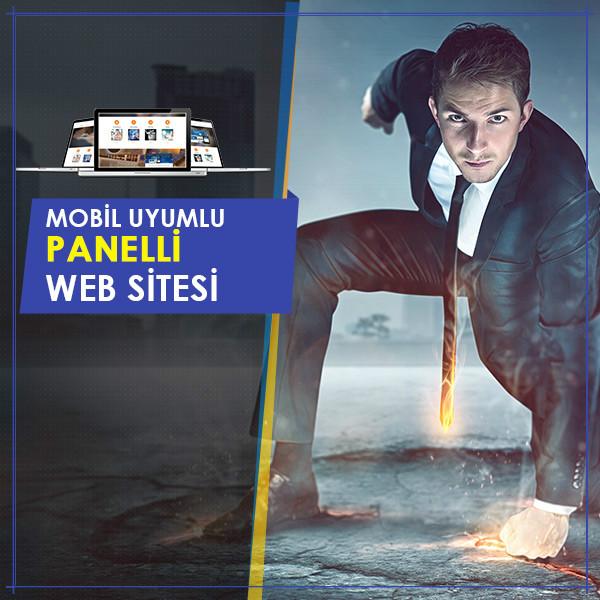 Responsive Panelli Web Sitesi Tasarımı Ayaner.Net Ürünü